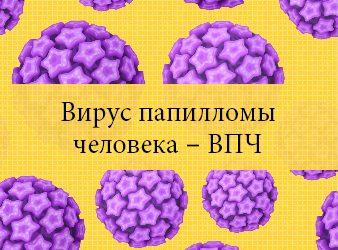 Вирус папилломы человека – ВПЧ