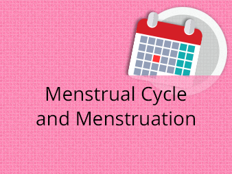 Menstrual Cycle and Menstruation