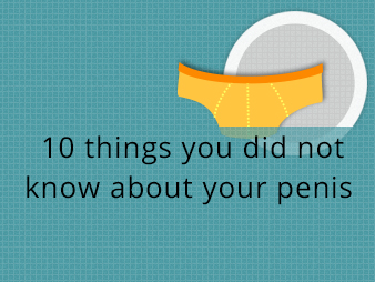 Things you did not know about your penis
